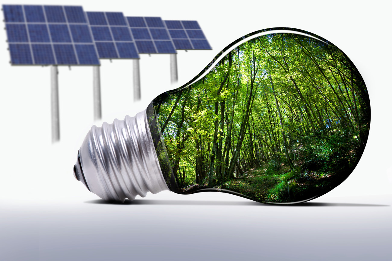 научная деятельность в родовом поместье экологические технологии