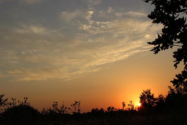 закат в поместье Кисловых