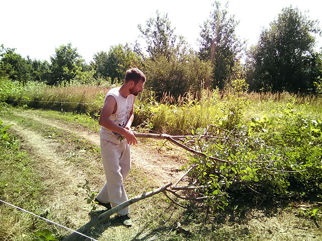 Как построить дороги в поселении родовых поместий Сказочный Край